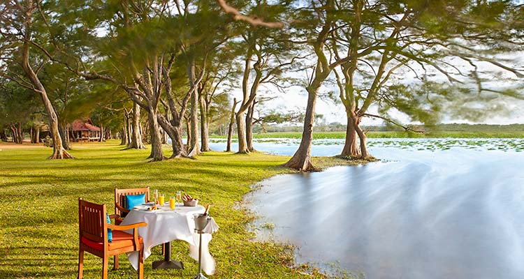 Setting for Private Dinner by a Lake in Habarana